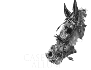 Pencil Horse Drawing Print