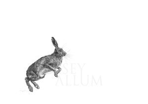 Pencil Leaping Hare Drawing Print