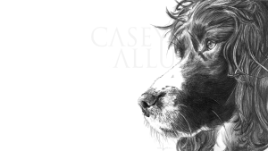 Pencil Springer Spaniel Drawing Print