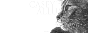 Pencil Cat Drawing Print