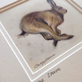 hare drawing Casey Allum artist