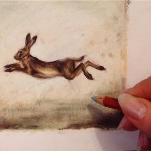 hare running drawing sketch Casey Allum artist