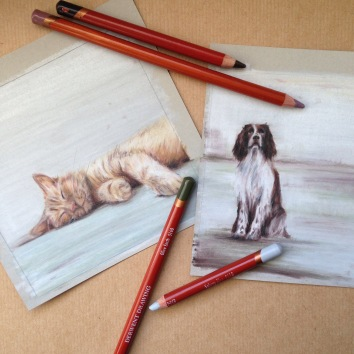 spaniel ginger cat drawing art artist Casey Allum